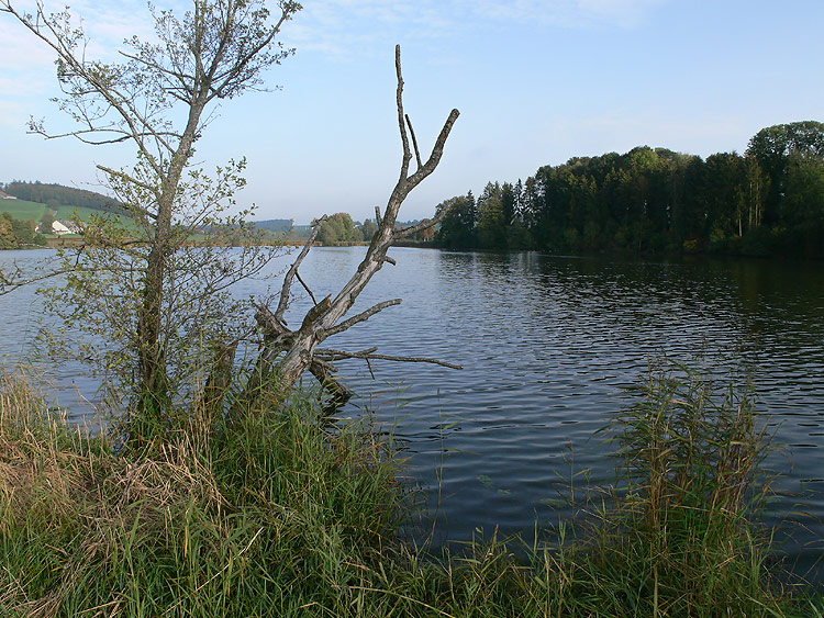 Foto Lac de Seedorf